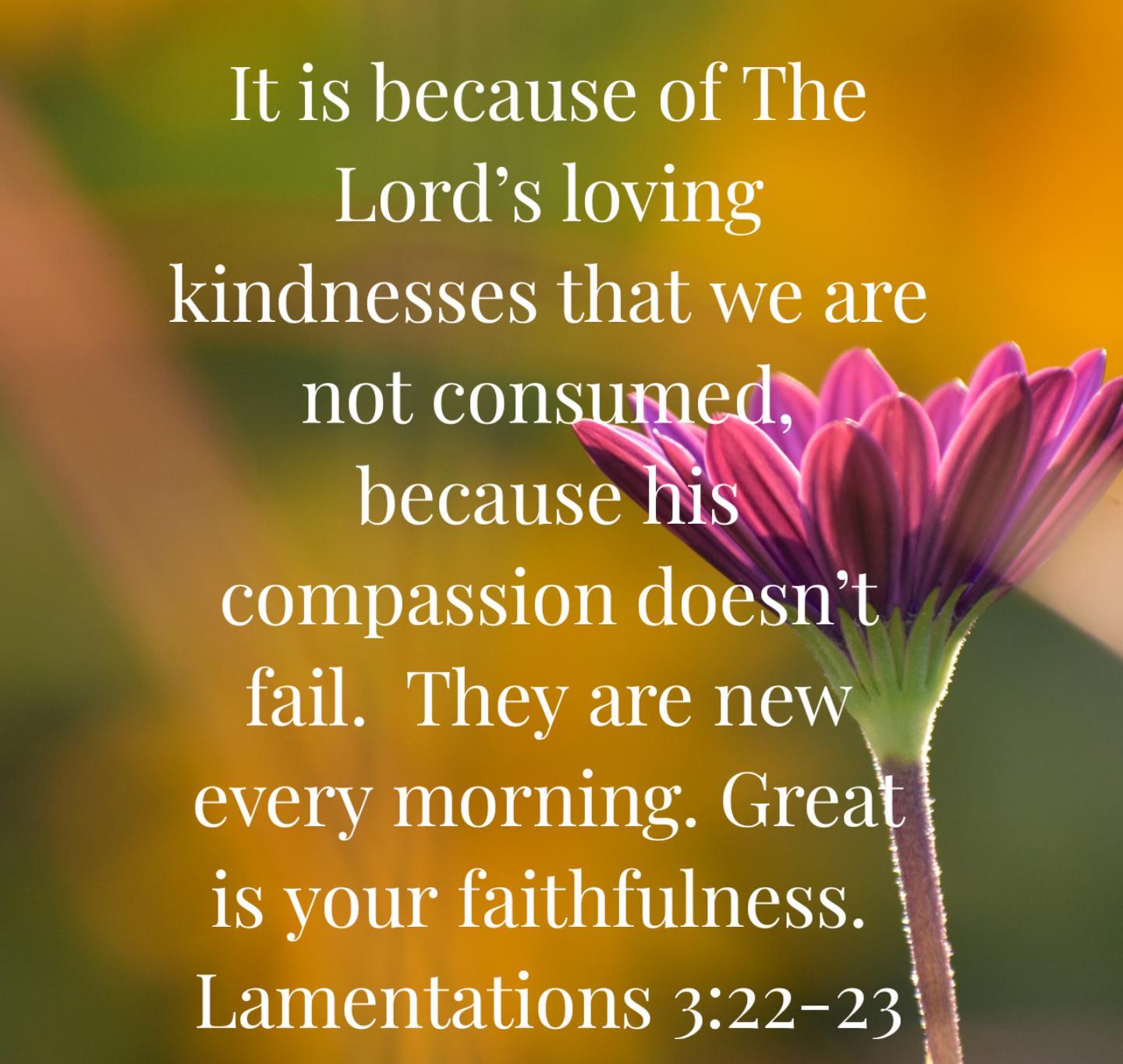 Rumination Journal: Lamentations 3:22-23 – Even Through the Bad ...